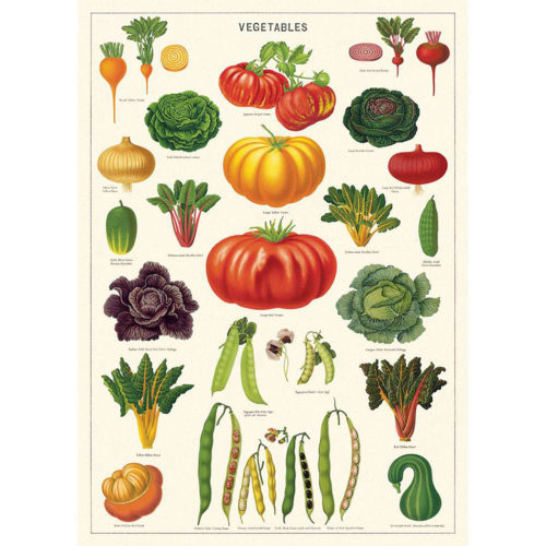 Cavallini Poster Wrap - Vegetable Garden