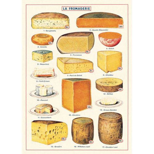 Cavallini Poster Wrap - Cheese