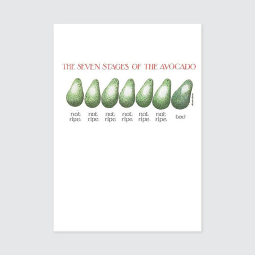 Simon Drew Card - Avocado