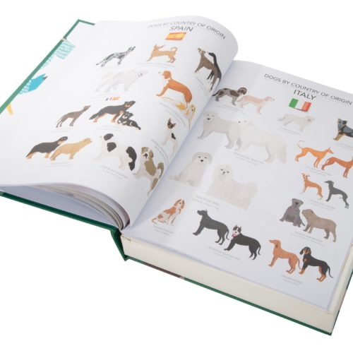 Puzzle Book - Dogs