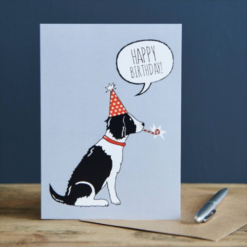 Sweet William Card - Black & White Springer Spaniel Happy Birthday