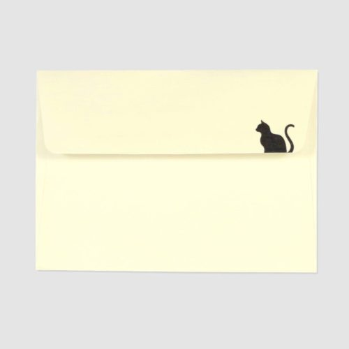 Peter Pauper Press Boxed Everyday Note Cards - Black Cat