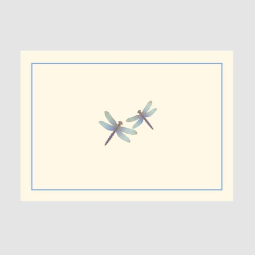 Peter Pauper Press Boxed Everyday Note Cards - Blue Dragonflies