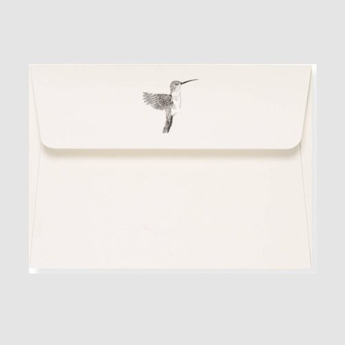 Peter Pauper Press Boxed Everyday Note Cards - Hummingbird