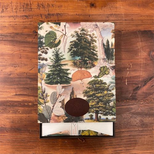 Bomo Letter Writing Set -The Mysterious Life of Trees