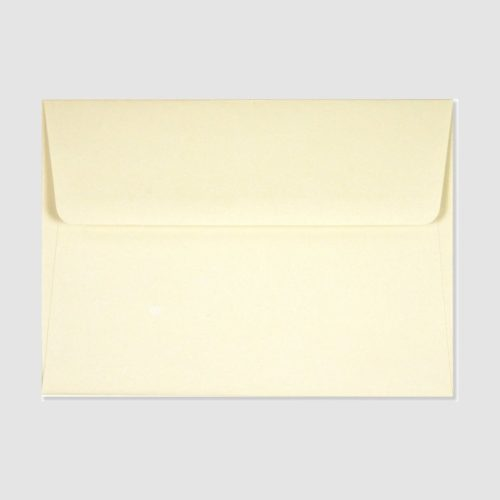 Peter Pauper Press Boxed Thank You Cards - Scallop