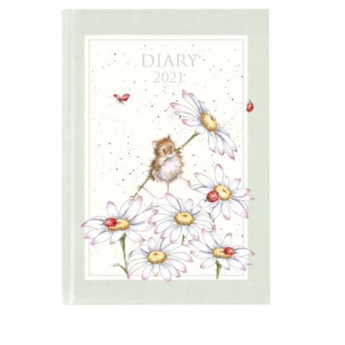 2021 Diary - Illustrated