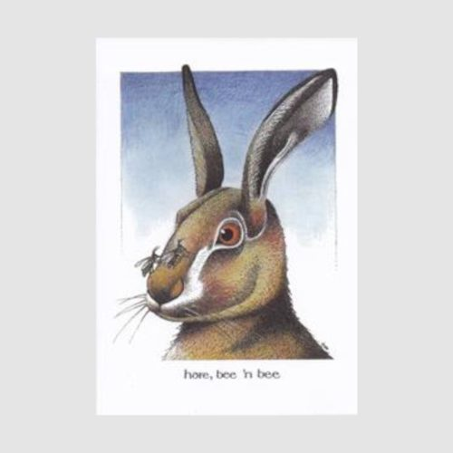 Simon Drew Card - Hare Bee N Bee