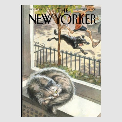 The New Yorker Card - Cat Nap Dog Party