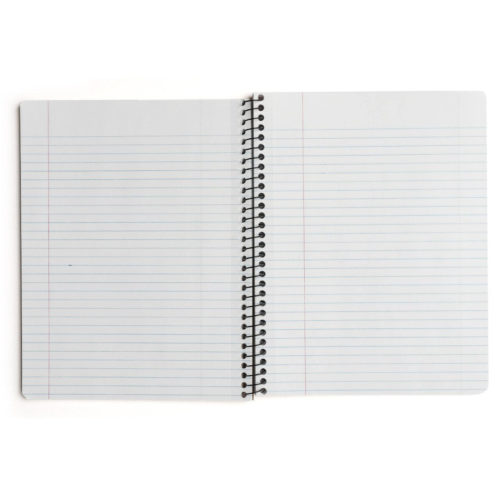 Decomposition Book - Large Notebook - Ruled - Hummingbirds