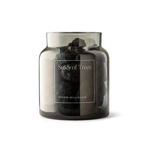 Sensory Collection - Study of Trees Scented Volcanic Rock Set