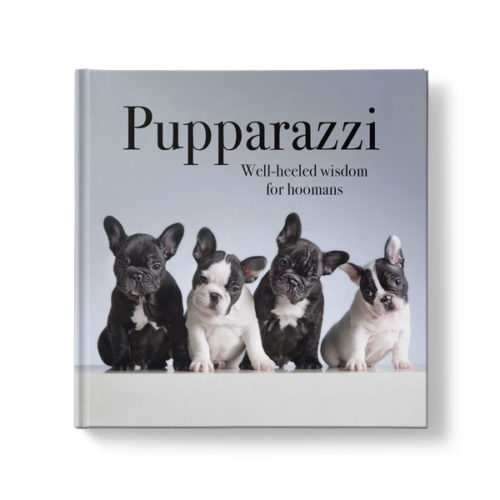 Pupparazzi - Well-heeled Wisdom for Hoomans